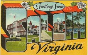Old Postcard, Salem Virginia Large Letter State Souvenir with Magnolia Blossoms