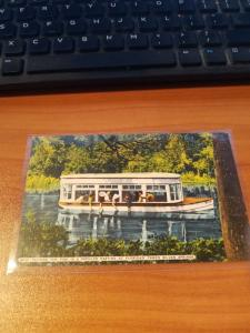 Antique/Vintage Florida Postcard, Jungle Cruise, Tropical Silver Springs, Fla.