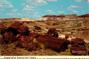Arizona Petrified Forest National Park Long Logs
