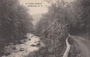 MILLBROOK , New York , 00-10s ; Turkey Hollow