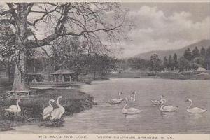 West Virginia White Sulphur Springs The Swan And Lake Albertype