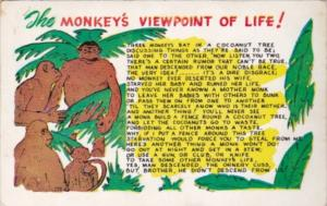 Humour The Monkey's Viewpoint Of Life 1954