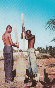 Haiti Natives In The Countryside Grinding Corn Cunard Line Card
