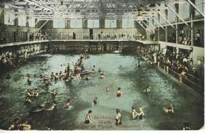 Interior Of Plunge Natatorium Park Spokane WA Washington Unused Postcard E9