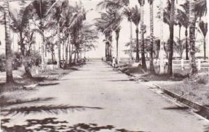 RP, L'Allee Des Cocotiers, Port-Gentil, Gabon, Africa, 1920-1940s