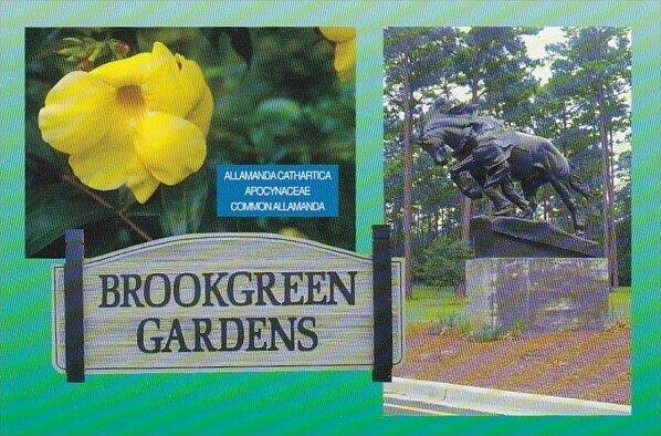 Brookgreen Gardens Myrtle Beach South Carolina
