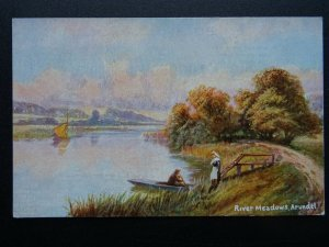 Sussex ARUNDEL River Meadows c1906 Postcard by S. Hildesheimer 5402