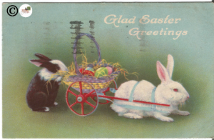 Vintage Postcard Cute Real-life White & Black/White Easter Bunny in Basket Wagon