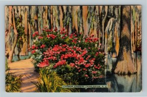 Charleston SC, Cypress Gardens, Linen South Carolina Postcard
