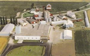 Aerial view showing head office and plant of King Grain & Seed Co. Ltd,   Ont...