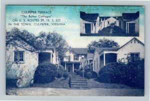 Culpeper VA, Culpeper Terrace Cottages, Vintage Virginia c1950 Postcard