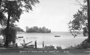 North Hero Vermont Beach At Birdland Real Photo Antique Postcard K86944