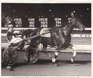 MEADOWLANDS, Harness Horse Race, SWEET SHARON winner, 1990
