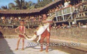 World Biggest Crocodile Farm Samutprakarn Thailand Unused