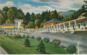 Maple Center Motel St Johnsbury VT Artist Sascha Maurer