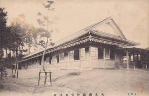 Side View Of A Building, Japan, 1900-1910s (2)
