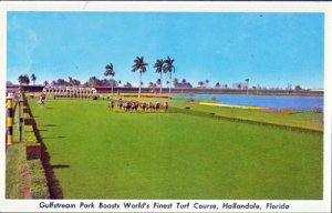 Hallandale FL - turf course at Gulfstream Park 1960s
