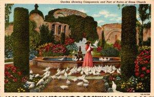 California Mission San Juan Capistrano Garden Showing Campanario & Part Of Ru...