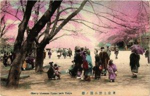 PC CPA YOKOHAMA Cherry Blossoms Uyeno Park JAPAN (a9268)