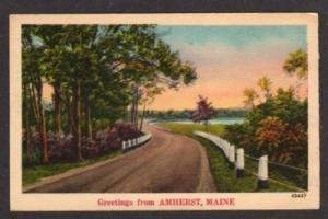 NY Road through the Birches LONG LAKE NEW YORK Postcard