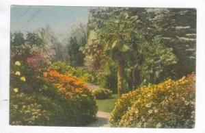 Lago di Como, Italy, 00-10s  Giardino della Villa Carlotta, Vegetazione subtr...