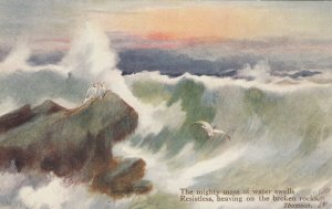 What are the Wild Waves Saying? , 1900-1907 ; TUCK 2399