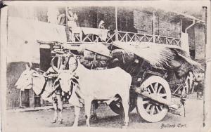 RP; Bullock Cart, Oxen, India, PU-1935