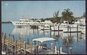 New Shoreham,Walker's Cay,Bahamas Postcard BIN