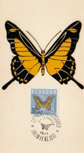 Maximum Card, ECUADOR, 1961; Yellow and Black butterfly