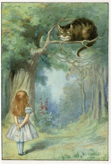 Cheshire Cat Alice in Wonderland Old 1911 Book Postcard