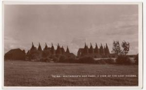 Kent; Whitbread's Hop Farm, A View Of The Oast Houses RP PPC, Unposted, c 1920's