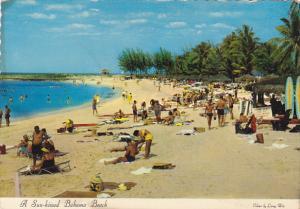 Bahamas A Sun Kissed Bahama Beach