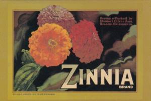 Zinnia Brand Lemon Box Label Stewart Citrus Association Upland California