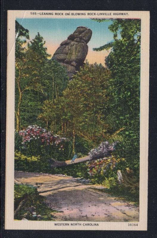 North Carolina colour PC Mountains near Little Switzerland unused
