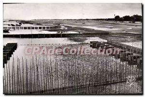 Postcard Old Bassin D'Arcachon Cap Ferret Gironde The Parks at Oysters to the...