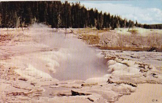 Oblong Geyser Crater Yellowstone National Park