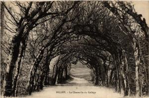 CPA BELLEY La Charmille du College (485564)