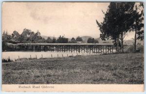 GISBORNE, New Zealand    View on ROEBUCK ROAD  ca 1910s     Postcard