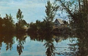 Caldwell Idaho~K O A~Boise River, Bass Lake Crappie & Blue Gill 1950s Postcard