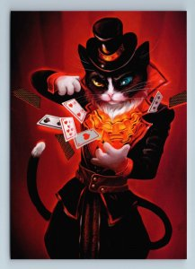 CAT with PLAYING CARD Magician Wizard Fancy Fantasy Russian New Postcard
