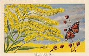 AS: Goldenrod (soldiago serotina), Nebraska State Flower, Monarch Butterfly, ...
