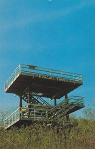 Looking Up At Kiwanis Tower, Scenic Viewpoint, Stark Wilderness Center, Wilmo...