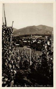 CPA AK die Weinstadt am Blauen GERMANY (891368)