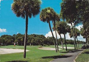18th Hole Of The Sea Pines Plantation Ocean Course, Hilton Head Island, South...