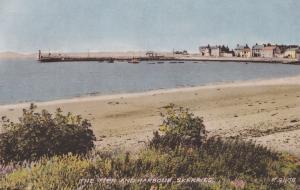 Skerries Pier & Harbour County Fingal Ireland 1950s Postcard