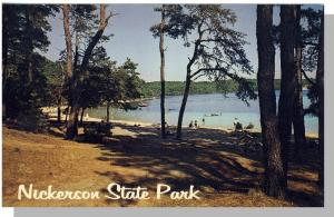 Brewster, Mass/MA, Postcard, Nickerson State Park, Cape Cod