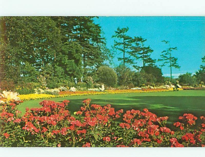 Beacon Hill Park Flowers Garden Victoria B C  Postcard # 6049