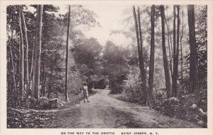 New York Saint Josephs On the Way To The Grotto Albertype
