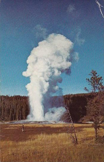 Giant Geyser Yellowstone National Park 1971