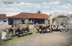 CUBA, 1900-1910's; Cuban Ox Team